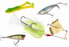 Photo of 10 Best Bass Lures That Work Year Round